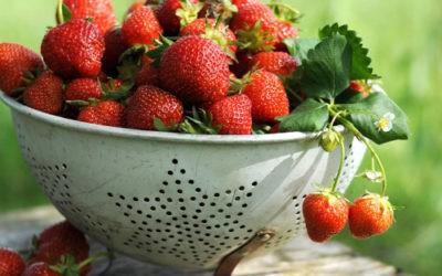 Mein Erdbeer-Chutney